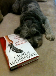 Tilly wanted me to read it, too!