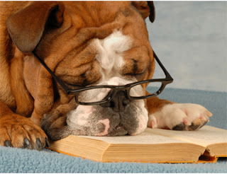 Dogs Reading via Love at First Book